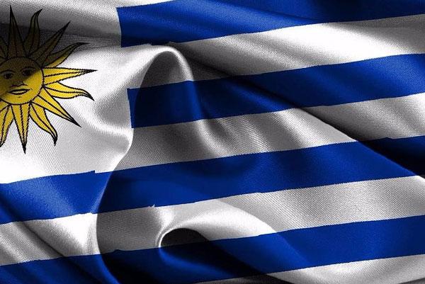Servicios al Uruguay